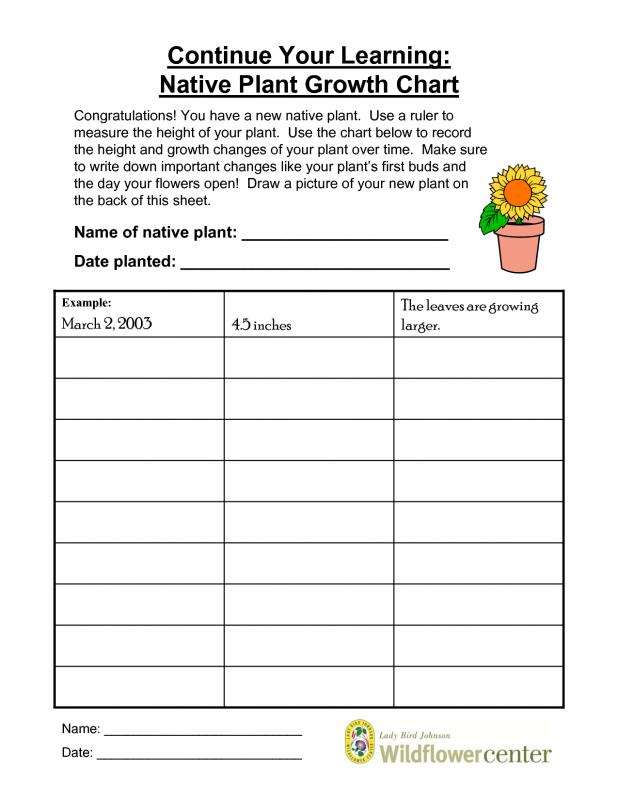 Science Fair Project Template shatterlioninfo