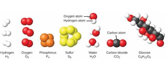 molecule vs atom - Kenicandlecomfortzone - molecule vs atom