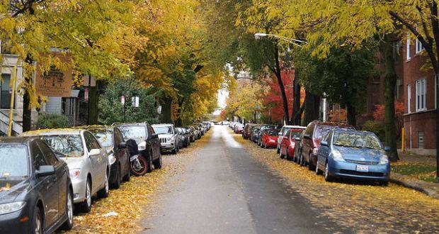BPO-2013-Fall-on-Wellington-Ave-Chicago