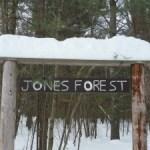 Jones Forest