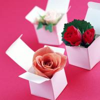 Valentines Day Flowers For Your Beloved