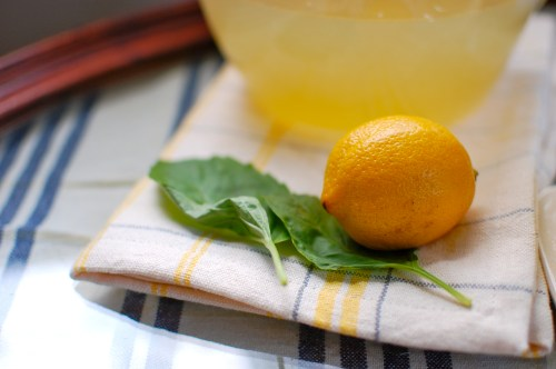 lemon basil recipe