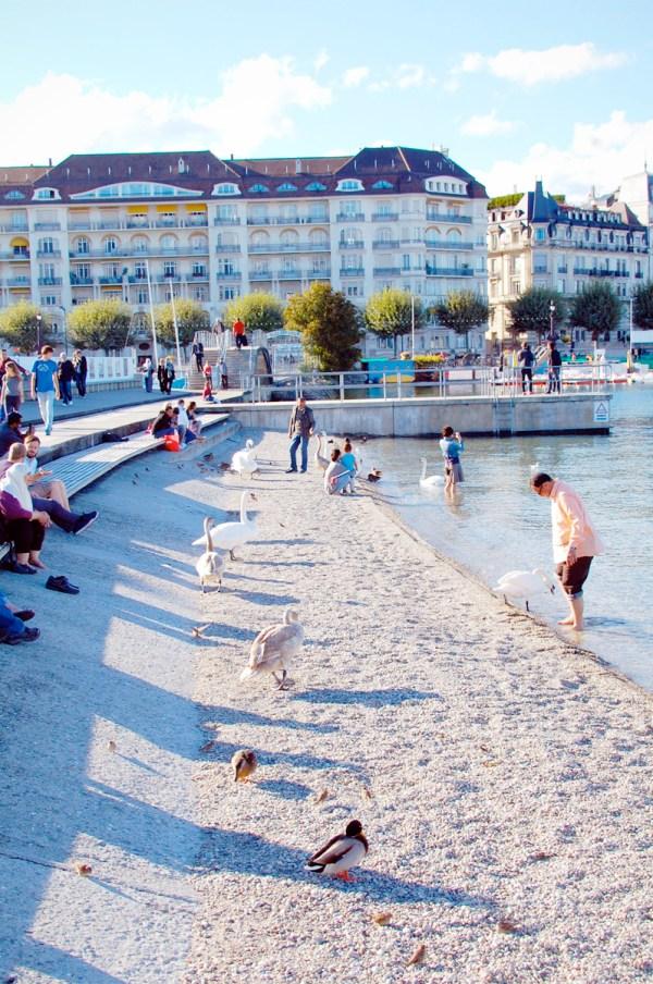 Geneva Lake Beaches