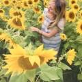 buckley k hada dress; colby farm sunflowers