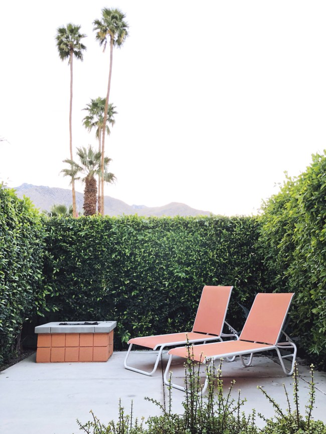 palm springs airbnbs; the twist palm springs