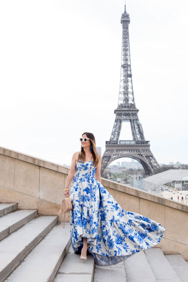 blue and white chinoiserie gown jennifer lake