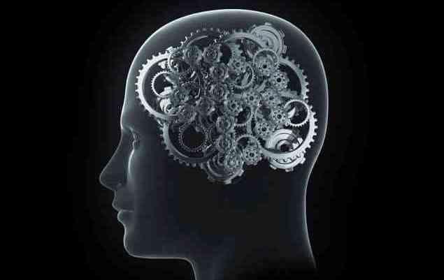 Truri i Njeriut – Dhjetë fakte interesante rreth tij