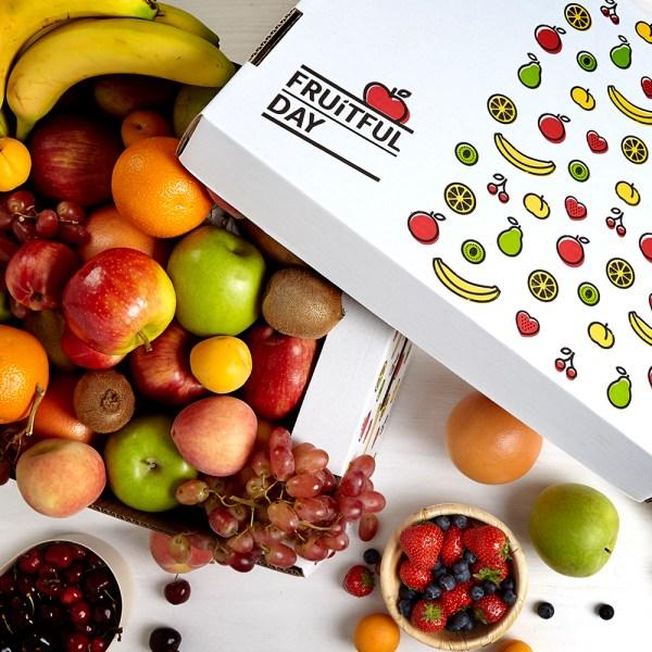 Fruitful Day