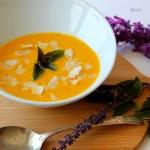 Carrot Pumpkin Coconut Soup- ShesCookin.com