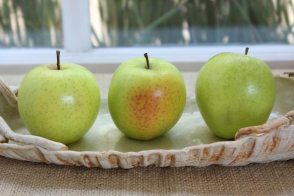 Green Dragon Apples, new apple variety