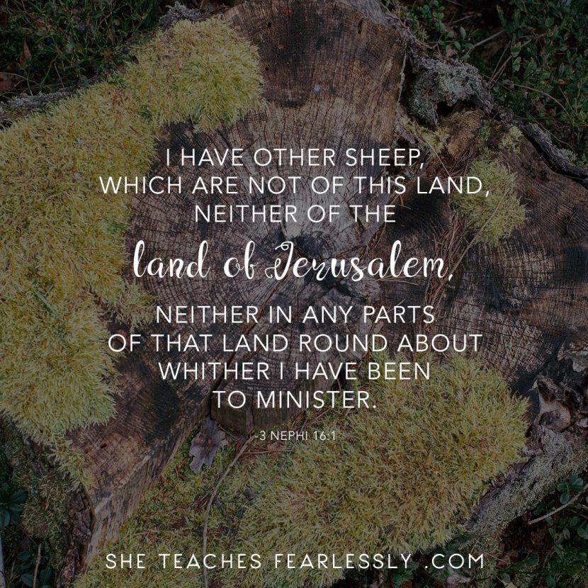 3 Nephi 16:1 #STFBOM