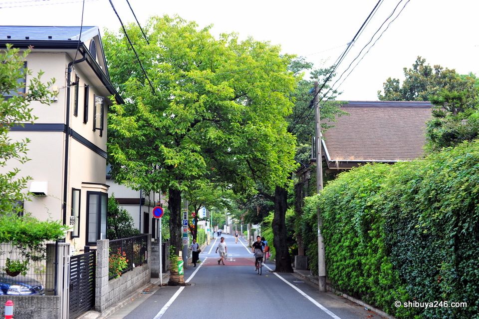 Beautiful streets in Seijo