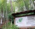城郭を生かして整備された「小机城址市民の森」