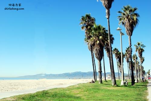 洛杉矶威尼斯沙滩 (Venice, Los Angeles)