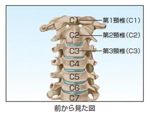 cervical02