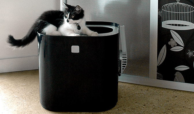 Small Enclosed Cat Litter Box Home Ideas