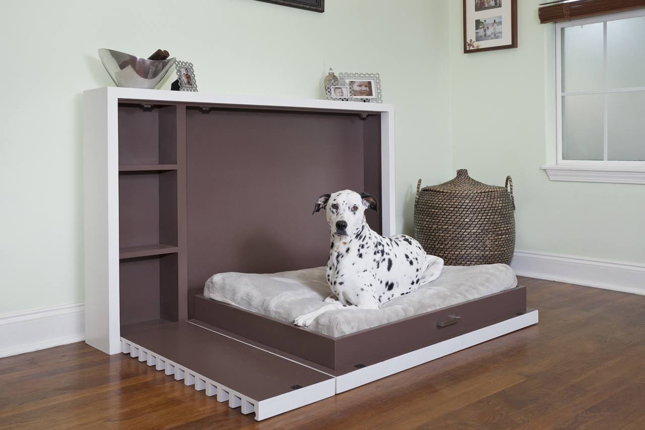 Fold Out Beds For Small Spaces Murphy Dog Bed Shoebox Dwelling Finding Comfort Style