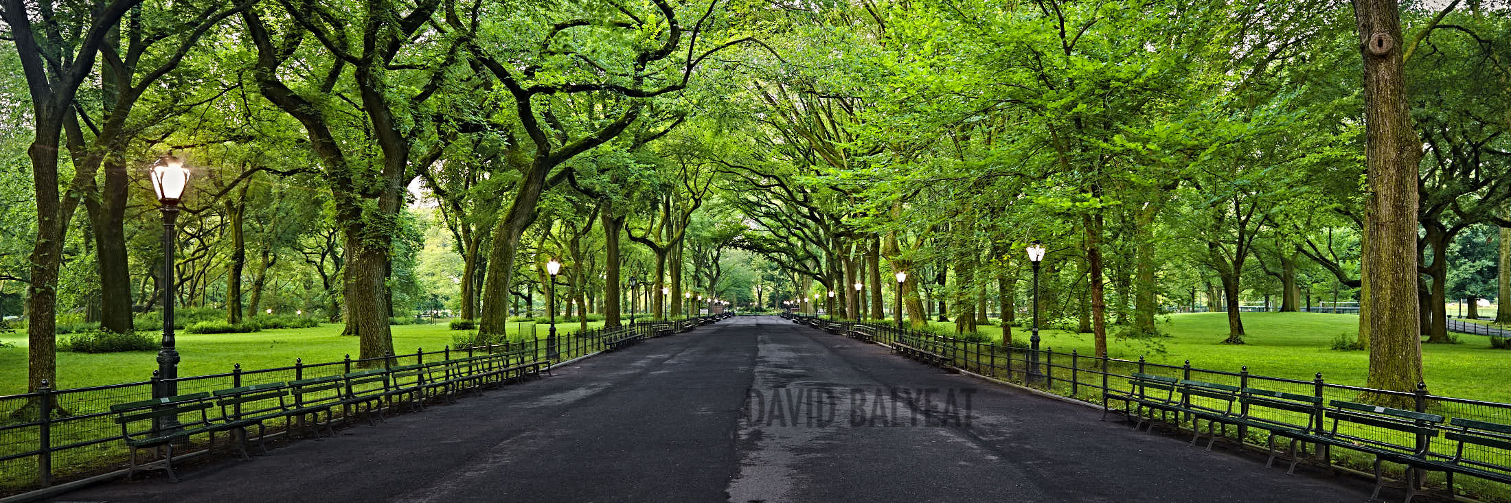 Poets Of The Fall Wallpaper City Escape Central Park Summer David Balyeat