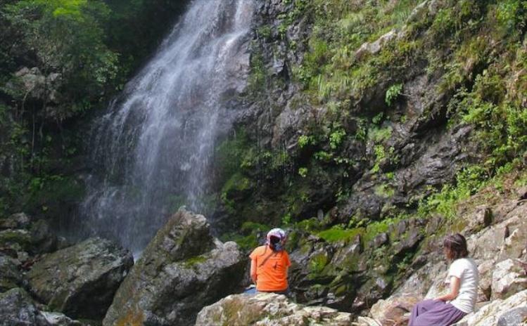 四万十川の森の美しい滝