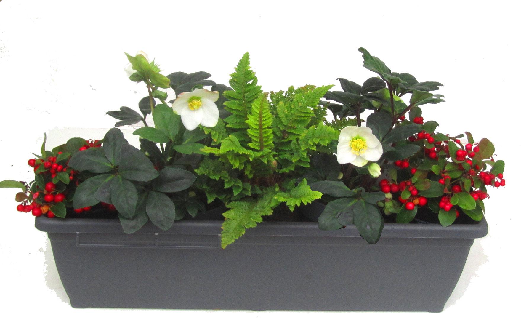 Kunstliche Pflanzen Fur Balkon Kunstliche Pflanzen Vase Set