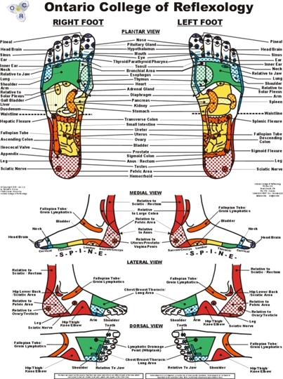 touch this special chinese reflexology point on your foot for