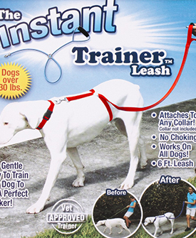 Instant Puppy Dog Trainer Leash