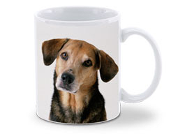 Shutterfly Mug