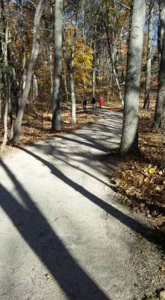 Wider paths on the newly remodeled trail