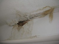 How To Stop Water Leaking From Ceiling  Shelly Lighting