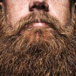 Big-Bearded-Man