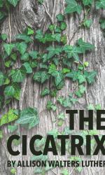 The Cicatrix