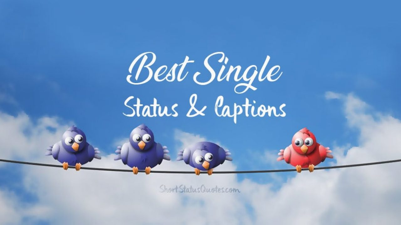 Single Status Single Captions Funny Single Quotes