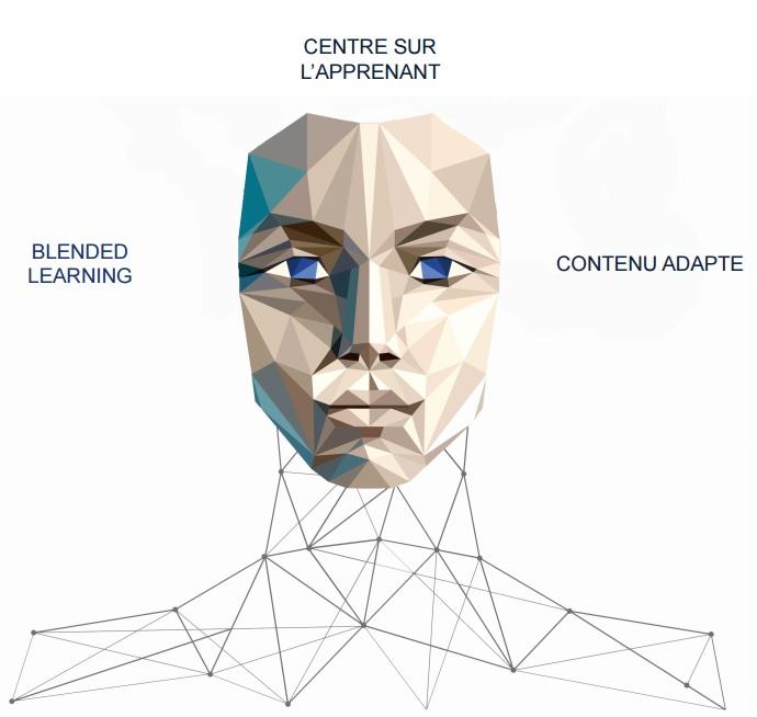 Portrait-robot d'une solution idéale de formation et de support aux utilisateurs d'outils digitaux