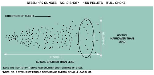Hunting With Shot Steel Vs. Lead: Differences You Should Know
