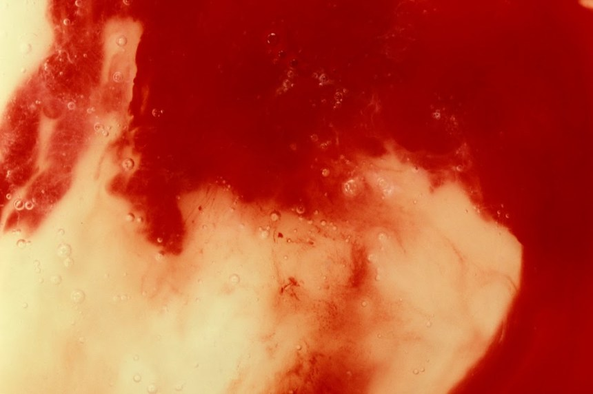 Andres Serrano  Blood and Semen III, 1990 Chromogenic color print Edition 1 of 4 40 x 60 inches Courtesy of the artist