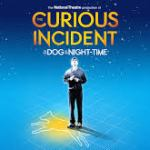 Dr. Phillips Center In Orlando Announces Tickets to THE CURIOUS INCIDENT OF THE DOG IN THE NIGHT-TIME On Sale to General Public Tomorrow, August 26