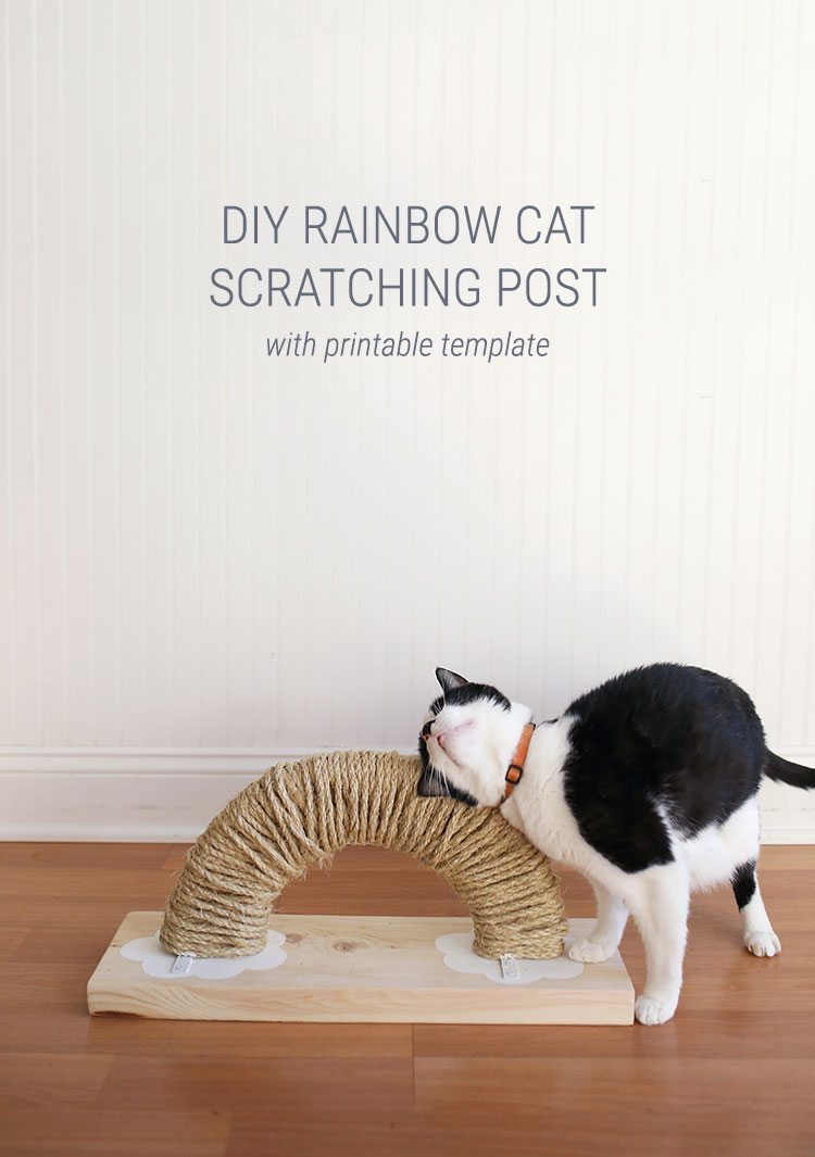Pretty Cat Furniture How To Make A Modern Diy Cat Scratching Post Shrimp Salad Circus