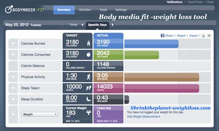 Bodymedia Fit Dieting tool
