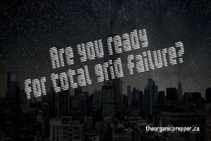 Are-you-ready-for-total-grid-failure-300x200