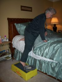 step stool to get into bed - 28 images - step stools foter ...