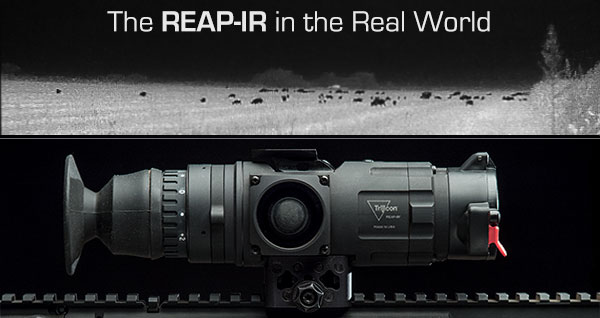 REAP-IR REVIEW