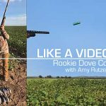 Like a Video Game! Rookie Texas Dove Combat for this Rocky Mountain Girl!