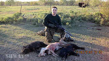 Tactical Hog Hunting Success