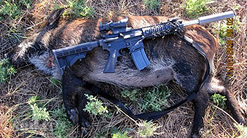 atwell-tactical-hog-hunt8.jpg
