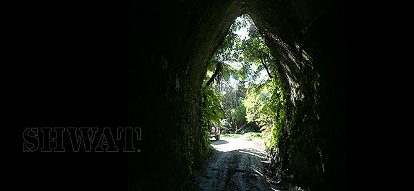 New Zealand Forgotten World Tunnel