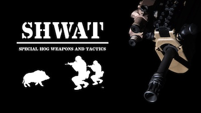 IWI Tavor and SHWAT