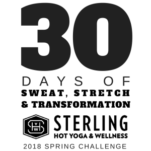 30 Day Challenge T-Shirt 2018 Spring