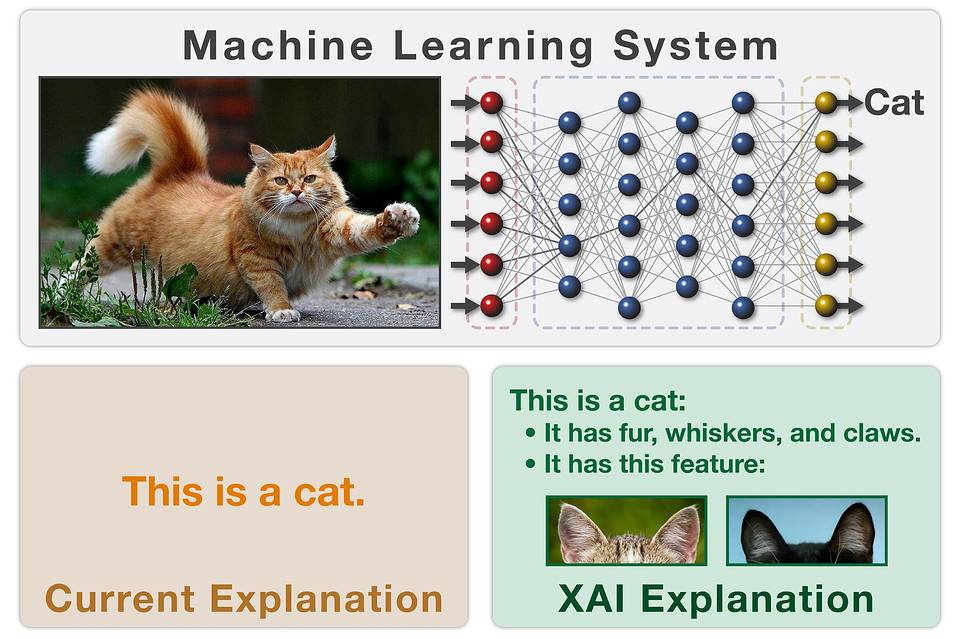 Inside Darpa\u0027s Push to Make Artificial Intelligence Explain Itself