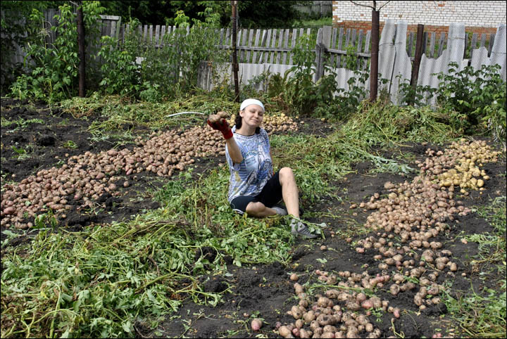 Get Planting! Minister Urges A Return To Soviet-Era Food Policy To