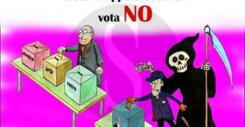 Referendum inceneritore